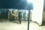 నాలుగేళ్ల చిన్నారి బ్యాటింగ్ స్కిల్స్కి సోషల్ మీడియా ఫిదా వీడియో
