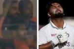 India vs England: రిషభ్ పంత్ సెంచరీ.. ఎగిరి గంతేసిన విరాట్ కోహ్లీ.. ఆకట్టుకుంటున్న వీడియో!