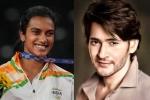 Olympics 2021: మరో చారిత్రాత్మక విజయం.. సింధు గెలుపుపై సూపర్ స్టార్ ట్వీట్! రకుల్ ప్రీత్ సింగ్ ఏమందంటే?