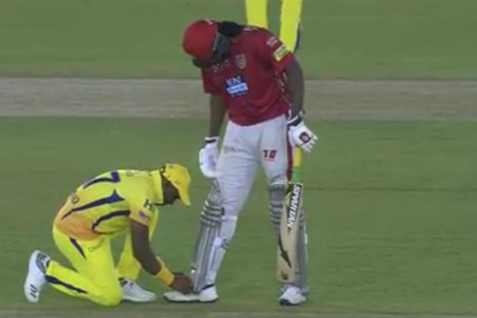 Chris Gayle to Dwayne Bravo: Bro, tie my shoe laces?
