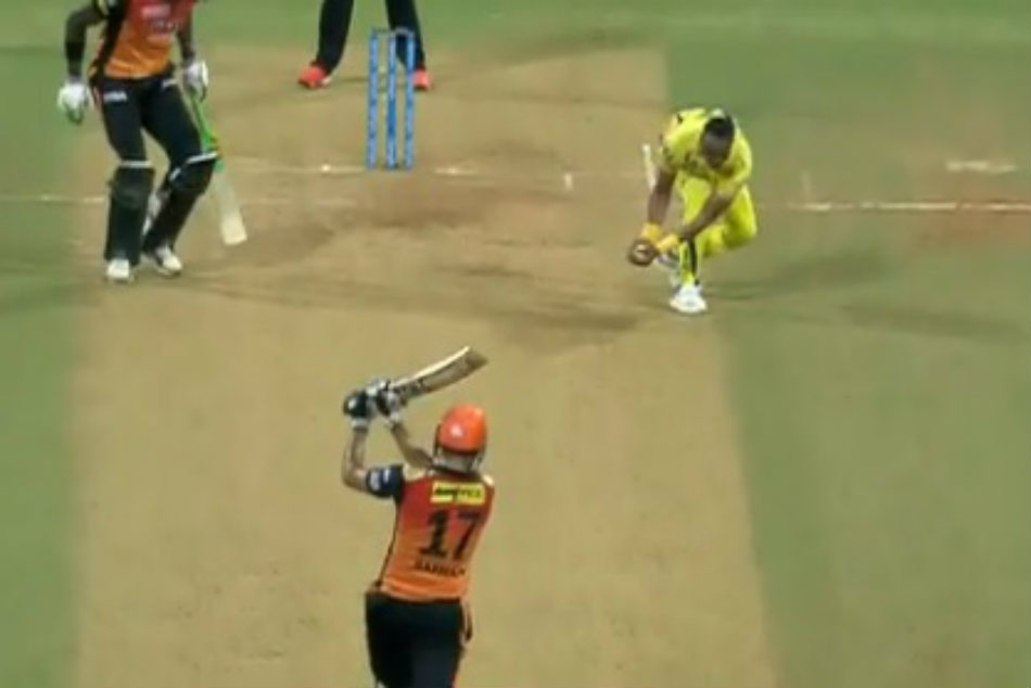 Seeing This Fantastic Catch You Will Also Say Dwayne Bravo Is The Champion