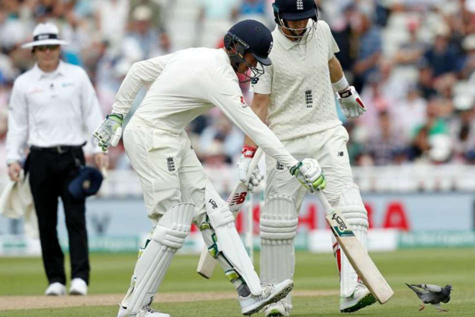 India vs England: Keaton Jennings refuses to blame pigeon for unlucky dismissal