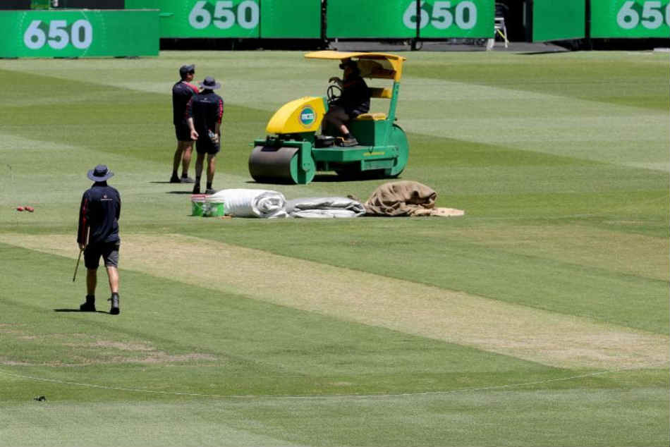 Don T Get Fooled Grass On Mcg Pitch Marcus Harris