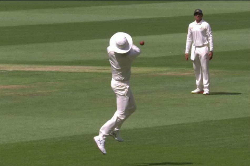 Watch Peter Siddle Drops Simple Catch Boxing Day Test Gets Trolled On Twitter For His Contribution