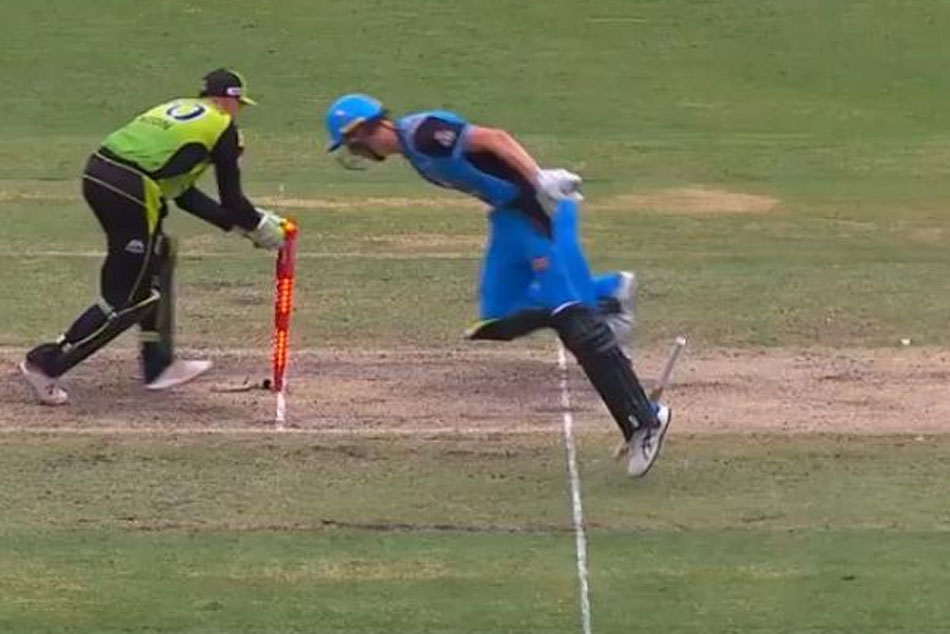 WATCH: Billy Stanlake gets run-out in comical fashion during Adelaide Strikers vs Sydney Thunder match in BBL