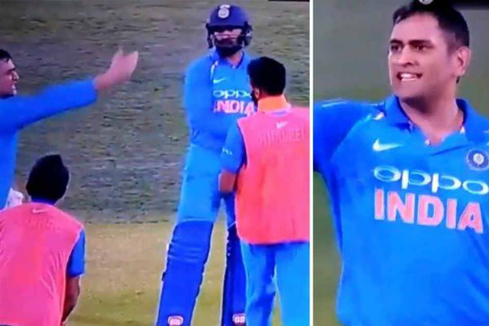 Watch Captain Cool Ms Dhoni Shouts At Khaleel Ahmed Walking On The Pitch In Adelaide