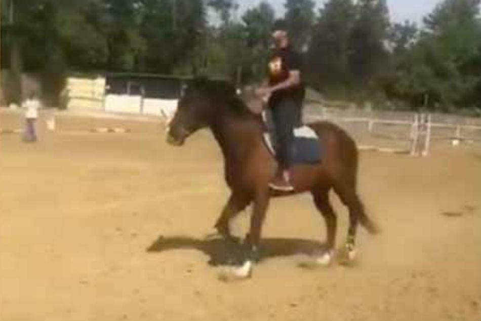 Watch Shikhar Dhawan Learns Horse Riding Ahead Australia Series