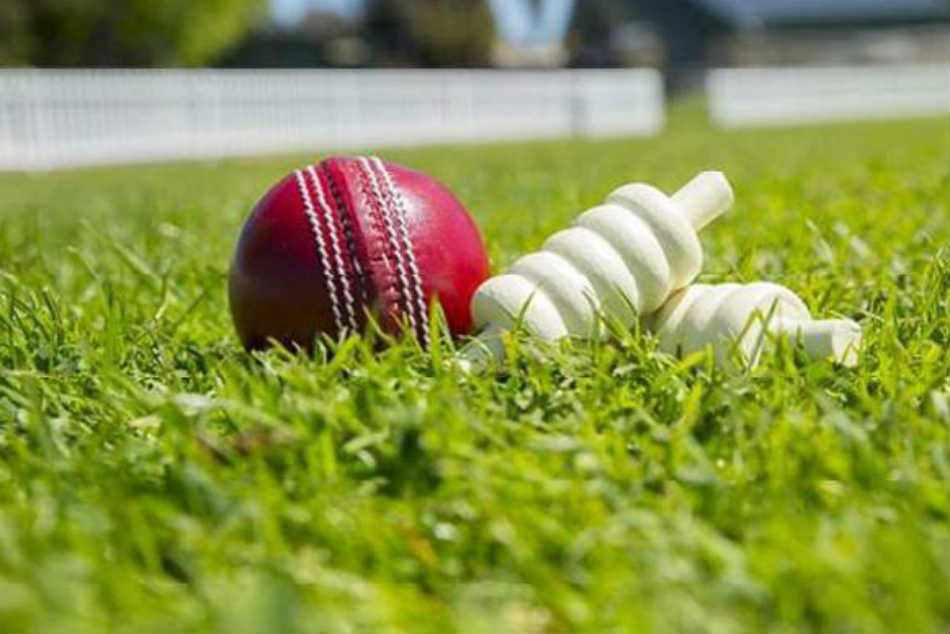 Cricket World Cup India Vs Pakistan Match Ball Sold For Whopping Rs 1 5 Lakh