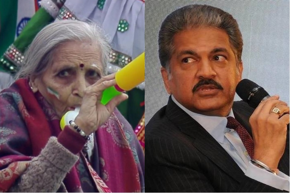 87-year-old superfan Charulata Patel wins over Anand Mahindra: Will pay her tickets for India matches