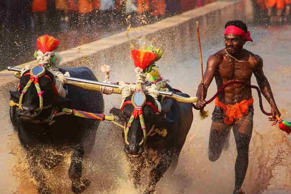 Kambala Jockey Srinivasa Gowda Turns Down Sports Minister Kiren Rijijus Invite For Sai Trials