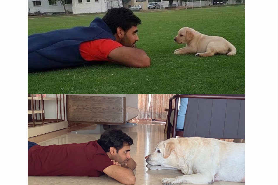Bhuvneshwar Kumar Shares Adorable Pictures With His Dog