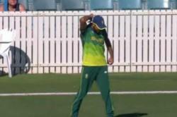 Imran Tahir Celebrates Fall Wicket On No Ball Watch Video