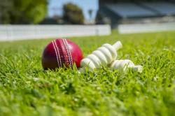 Vrv Singh Retires From Cricket After An Injury Hampered Career