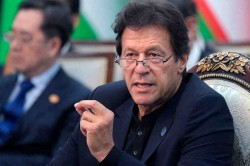 I Will Fix The Pakistan Cricket Team Says Pm Imran Khan
