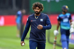 Srilanka Pacer Lasith Malinga Obtains Australian Residency Will Stay In Sustralia