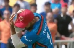 Watch Video Gulbadin Naib Trolled Hilariously For Dropping Easy Catch During Wi Afg Match