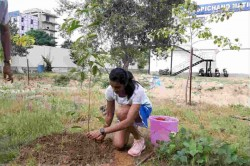 Pv Sindhu Participated In Green India Challenge And Planted Kadamba Sapling At Gopichand Academy