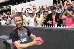 Watch New Zealand Lose But Kane Williamson Wins Hearts With This Brillaint Gesture For Fans