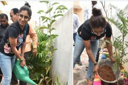 Indian Cricketer Mithali Raj Planted Saplings In Hyderabad House Throws Green Challenge To Sourav