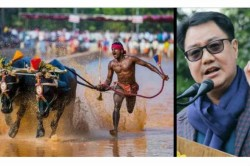 Sports Minister Kiren Rijiju Has Offered Support To Indian Buffalo Racer Srinivas Gowda